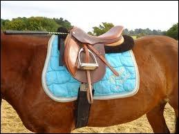 Puis-je monter sur ce cheval après avoir descendu l'étriller ? Ou il manque quelque chose ?