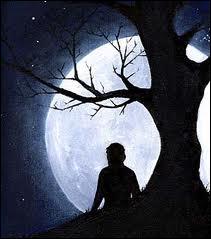 Pour me comprendre il faudrait connaître mes nuits, mes rêves d'amour et puis mes longues insomnies :