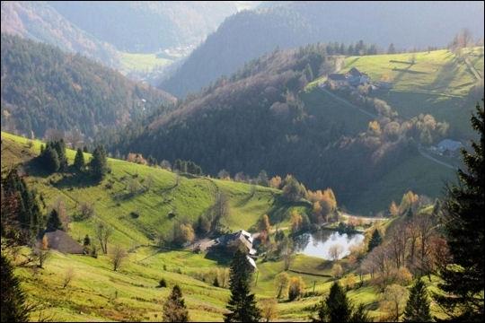Quel fleuve prend sa source dans la Forêt Noire ?