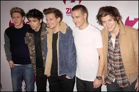 Où les One Direction se sont-ils rencontrés ?