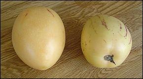 Quizz ces fruits aux multiples noms quiz fruits - Comment reconnaitre physalis comestible ...