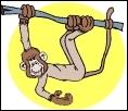 Ah, notre bon vieux  frère , le singe :