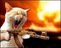 Quelque chose a eu le don de mettre ce chat en colère. On peut dire :