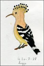 L' Israël a désigné un oiseau national en 2008. Mais de quel oiseau est-il question ?