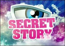 Quels sont les anges qui ont participé à Secret Story 6 ?
