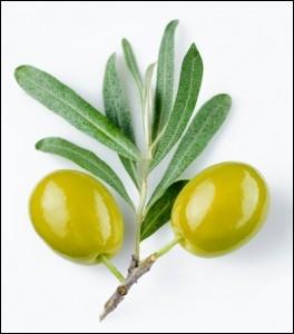Le nom de ce fruit est l'anagramme d'un synonyme du mot :