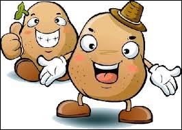 Vittelottes, sommes-nous des varietés de patates ?