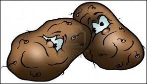 Bintjes, sommes nous des patates ?