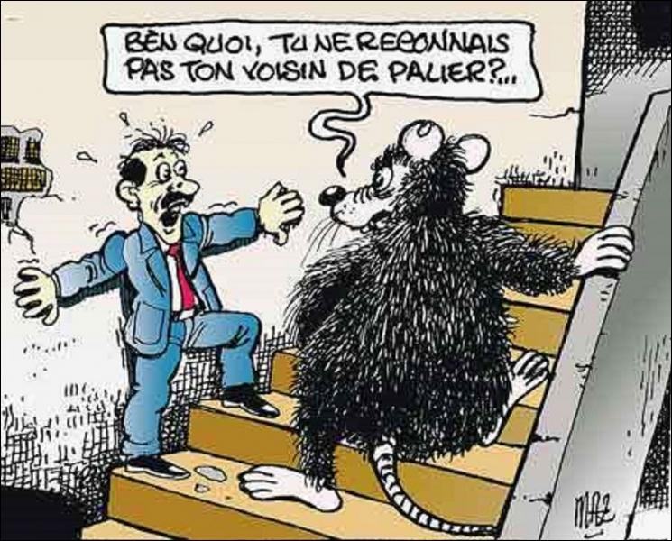 """Résultat de recherche d'images pour """"le rat humour"""""""