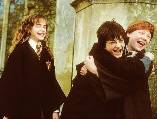 À partir de quand Harry et Ron deviennent-ils vraiment amis avec Hermione ?