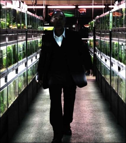 Ce film de Sono Sion raconte l'histoire d'une jeune fille travaillant dans le magasin de poissons tropicaux d'un vieil homme, père de substitution, qui cache en réalité de sombres secrets. C'est :