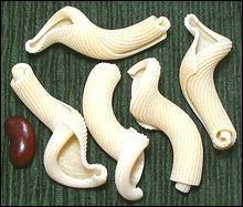 Ces pâtes très artistiques se nomment Fiorentine, ce qui veut dire ?