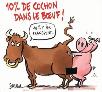 """Les """"Stupid Zèbres"""" c'est nous... - Page 4 15_ba13c"""