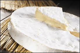 Quelle ville de la région parisienne associe-t-elle dans son nom l'appendice caudal et un fromage ?