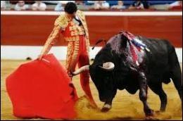 Dans une corrida, lorsque la prestation d'un matador a été appréciée par le public, il se voit décerner une récompense. Laquelle de ces parties anatomiques du taureau ne constitue pas un trophée ?