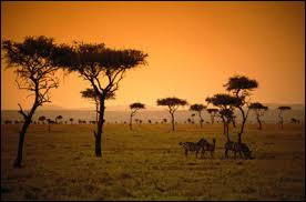 A quel continent, ce paysage correspond-il ?