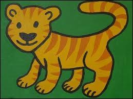 Je suis un oeil de tigre, suis-je une pierre ?