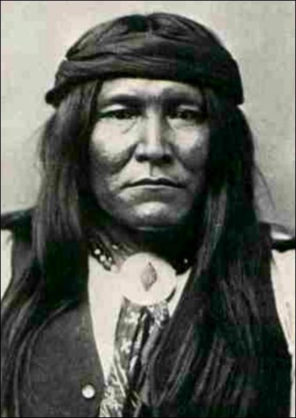 Apache injustement accusé du rapt d'un enfant blanc, plusieurs membres de sa famille sont pendus. Après des années de résistance il est placé dans une réserve indienne où il finira ses jours.