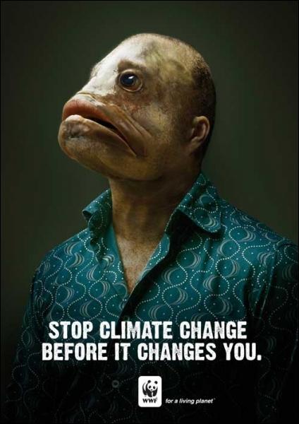 Combien d'espèces animales et végétales pourraient disparaître à cause du réchauffement climatique ?