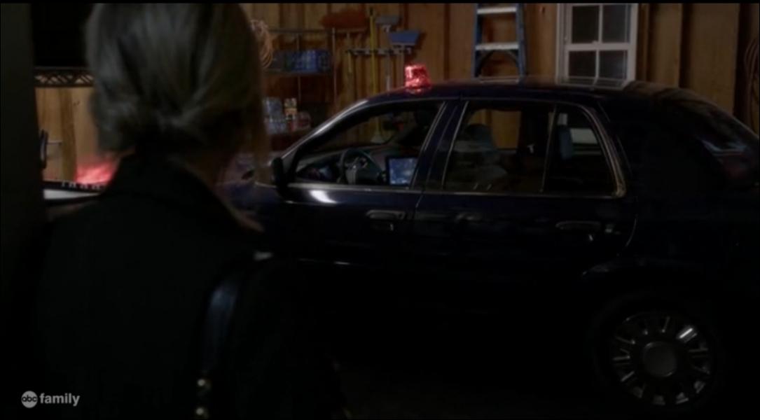 Avec l'aide de qui Hanna jette-t-elle la voiture du détective Wilden dans le lac ?