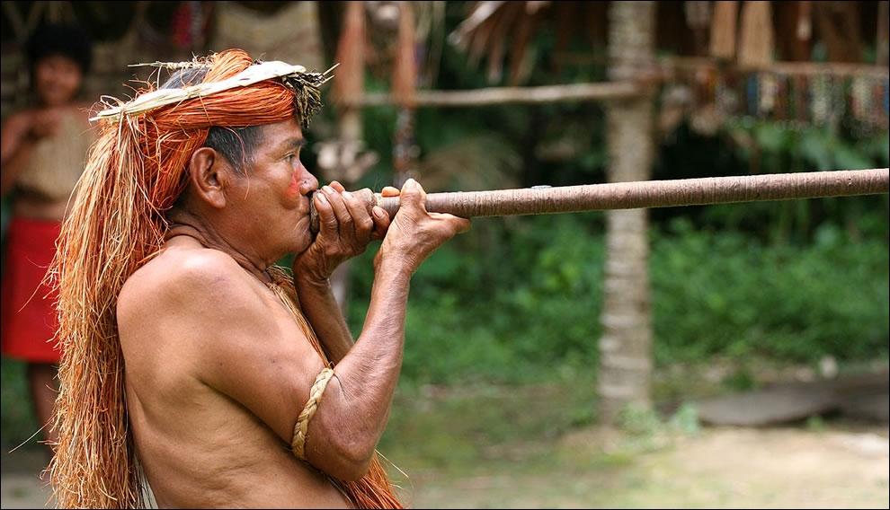 Francis Cabrel a chanté leur sarbacane, en Amérique du Sud, ils sont appelés :