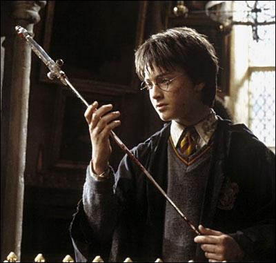 Avec quoi Harry vainc-t-il le monstre de la chambre ?