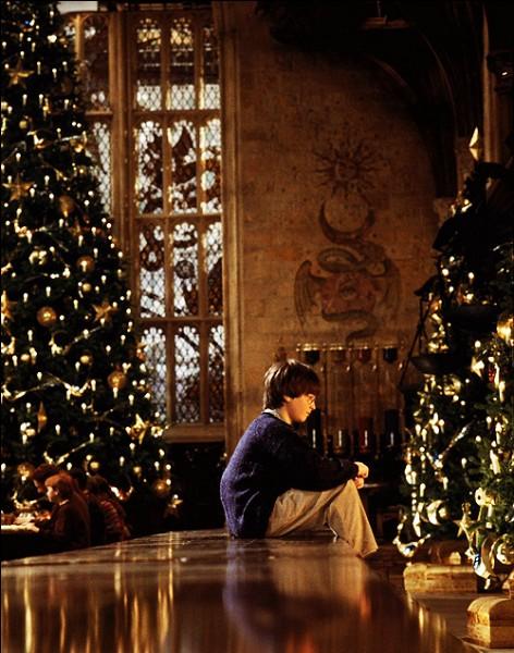 Que reçoit Harry à Noël ?