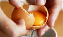 On ne fait pas ------ sans casser des œufs.