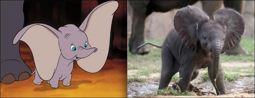 Un éléphant qui vole, c'est impossible vous croyez ? Pas pour Disney !