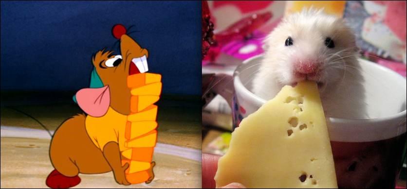 Comment s'appellent les deux souris présentes dans le film  Cendrillon  ?