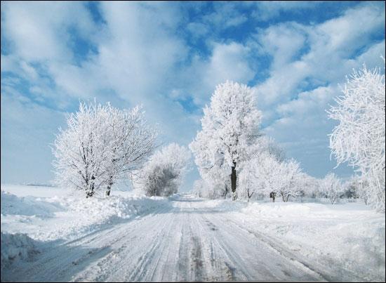 Pour visiter les environs de la ville de Telatyn, vous devrez parvenir d'abord dans ce pays, situé entre l'Allemagne et la Lituanie !