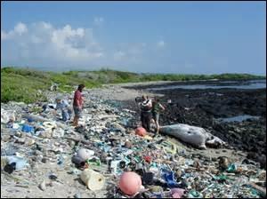 Quel événement a contribué à la prise de conscience d'une menace écologique globale dans l'opinion publique internationale ?