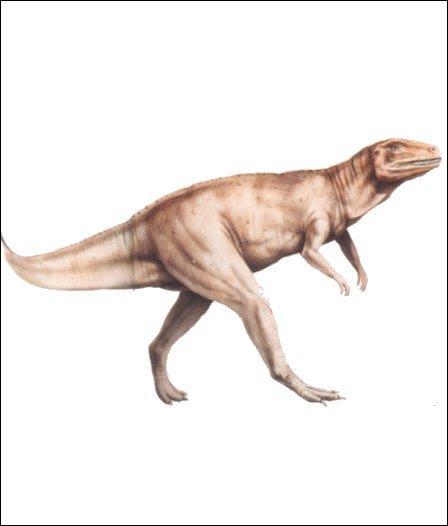 Quel est ce dinosaure?