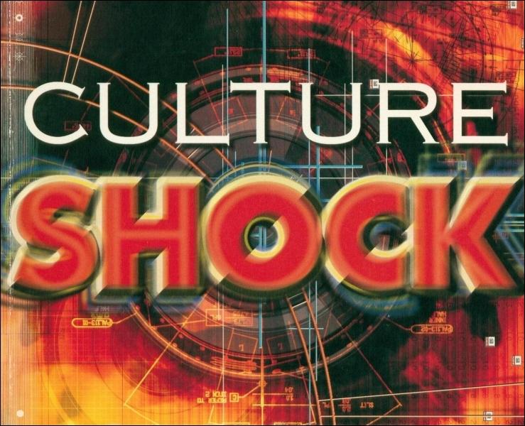 Outre les arts et les lettres, qu'englobe la culture ?