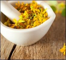 Quelle est cette plante vivace réputée pour ses effets antidépresseurs ?