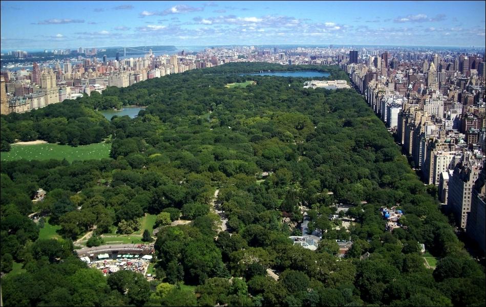 New York est plus actif que Paris, cela se voit car les vielles dames viennent au parc Monceau donner du pain aux oiseaux alors qu'à Central Park, comment sont les vielles dames ?