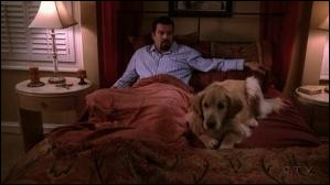 Comment s'appelle le chien guide d'aveugle de Carlos ?