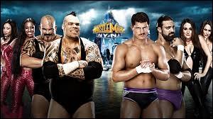 Qui a gagné entre Tons of Funk et The Funkadactyls contre Team Rhodes Scholars et The Bella Twins ?