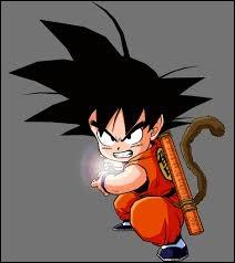 Grâce à qui Goku maîtrise-t-il le Kamehameha ?