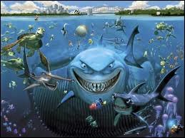 Combien de requins rencontrent Dory et Marin sur leur chemin ?