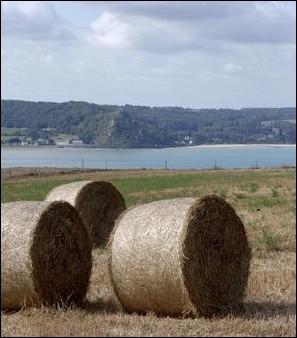 Grâce à ces nombreux sites historiques, cette grande région agricole pourrait s'orienter vers le tourisme.