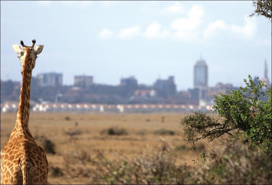 Quelle est la capitale du Kenya ?