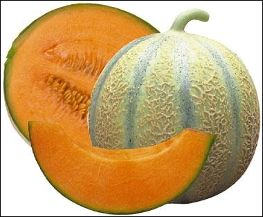 Comment dit-on melon en anglais ?
