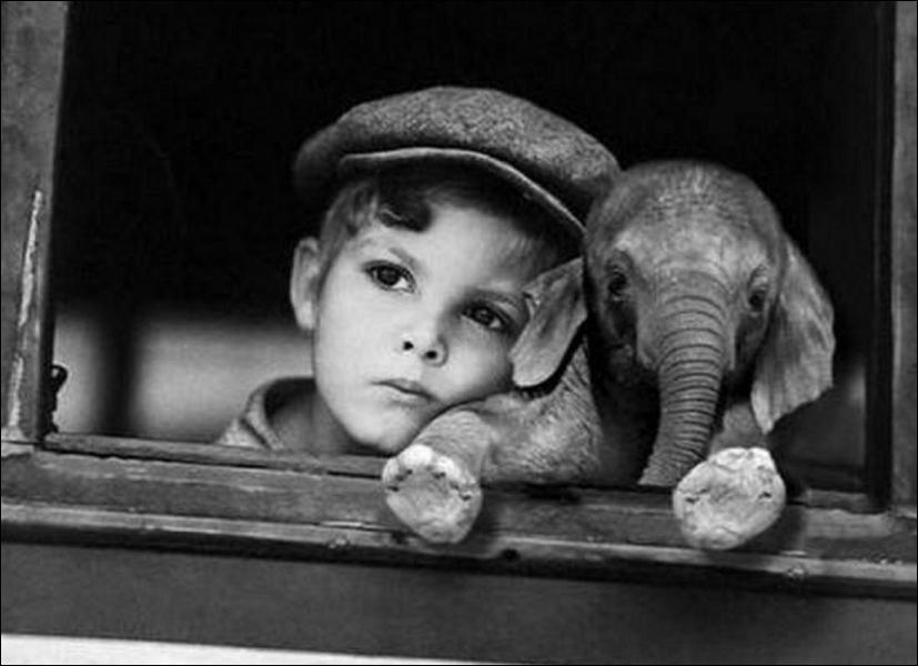 Combien pèse approximativement un éléphanteau à la naissance ?