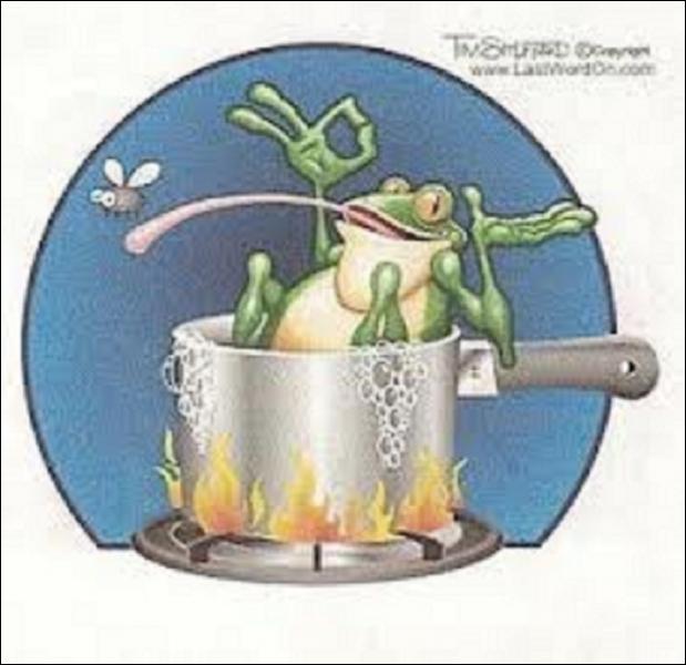 Une grenouille peut-elle revenir à la vie après avoir été congelée à une température de - 1, 5 °C ?
