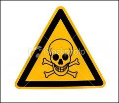 Ce pictogramme signalant une matière dangereuse est constitué de 4 éléments choisis pour attirer l'attention : un triangle noir, le fond en jaune, un crâne et deux os croisés. Quels sont ces os ?