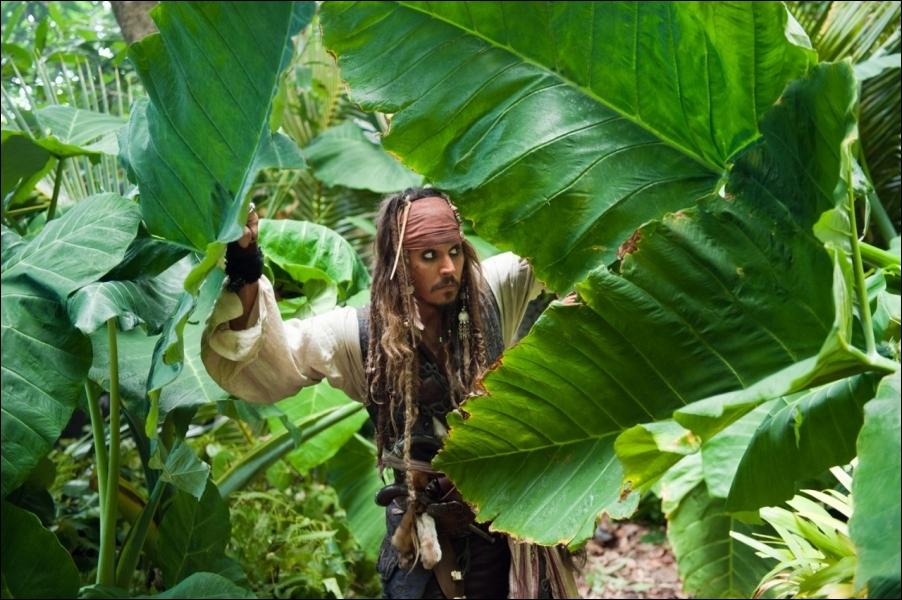 Quelle est la terreur de tous les pirates ?