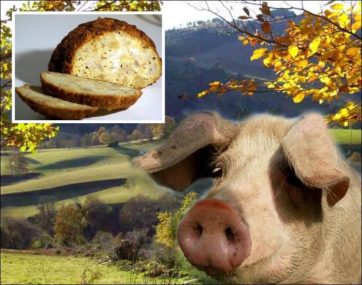 Comment appelle-t-on cette charcuterie, spécialité des montagnes entre Sidobre et Lacaune faite avec des oeufs, du pain et de la viande de porc salée et poivrée ?