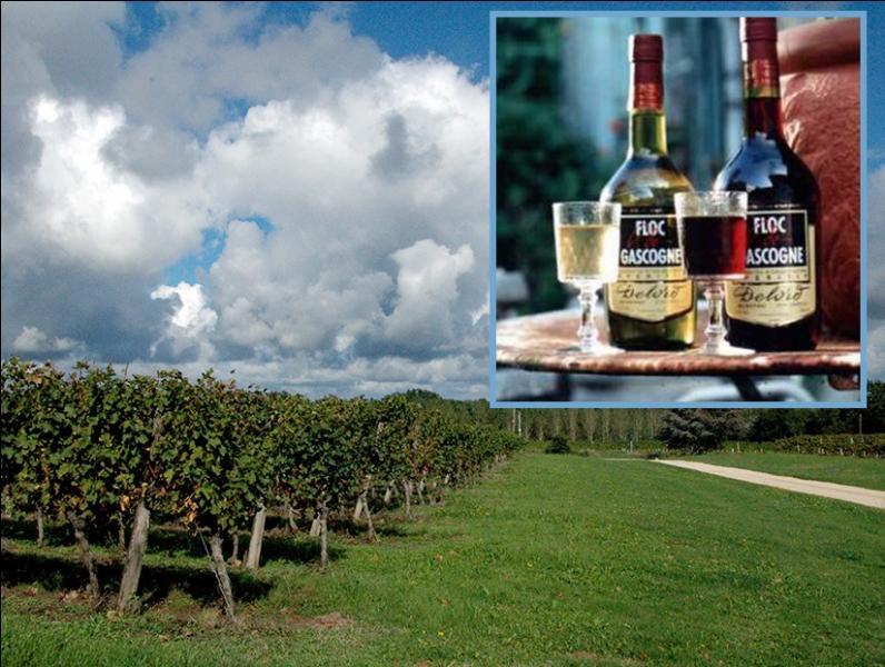 Le floc de Gascogne est un vin de liqueur élaboré par mélange de « moût » de raisin et d'armagnac jeune. Que signifie le mot  floc  en gascon ?