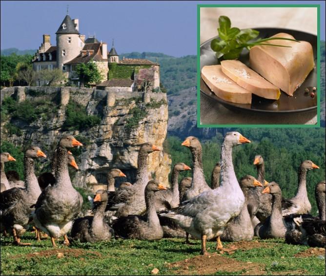 Grande productrice de foie gras, à quel rang se situe la région au niveau national ?